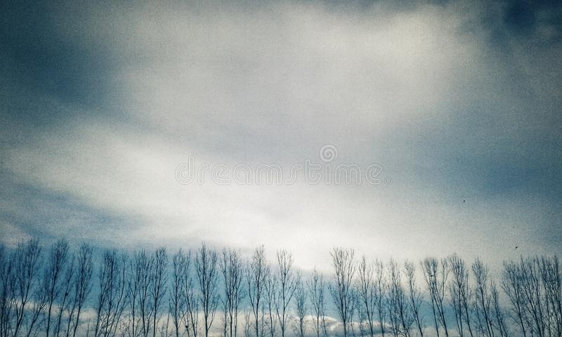 Haarlokhemel stock foto
