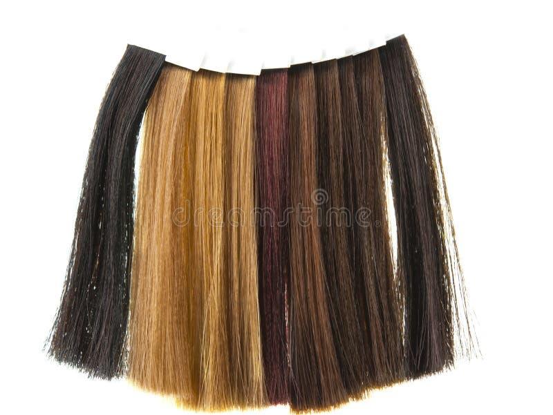 Haarproben stockbilder