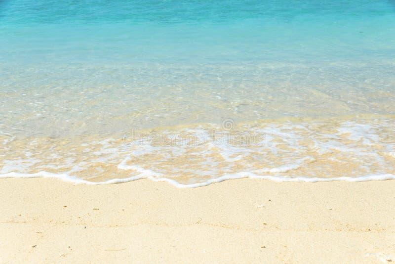 Haarscharfe Türkiswasserwelle stockbilder