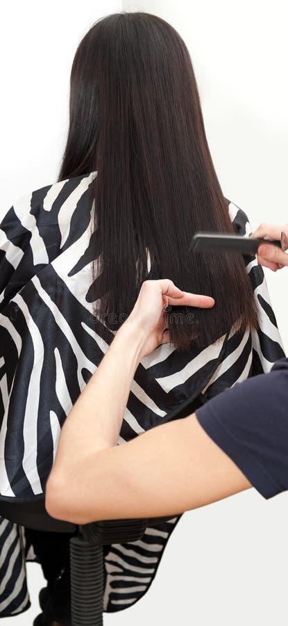 Haarschnittprozedur lizenzfreie stockfotos