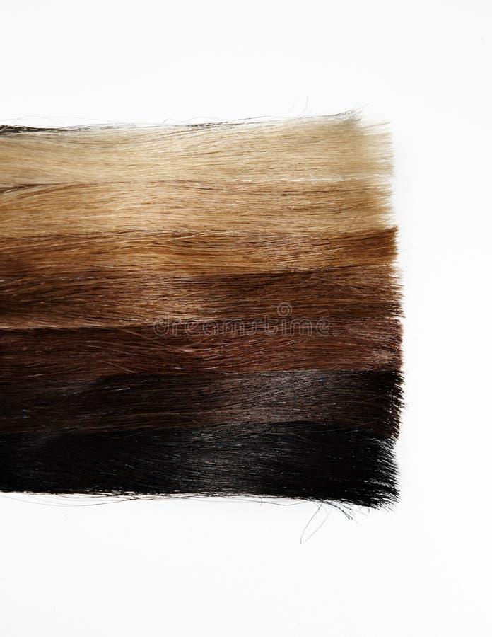 Haarsteekproeven van verschillende gradiëntkleuren stock foto