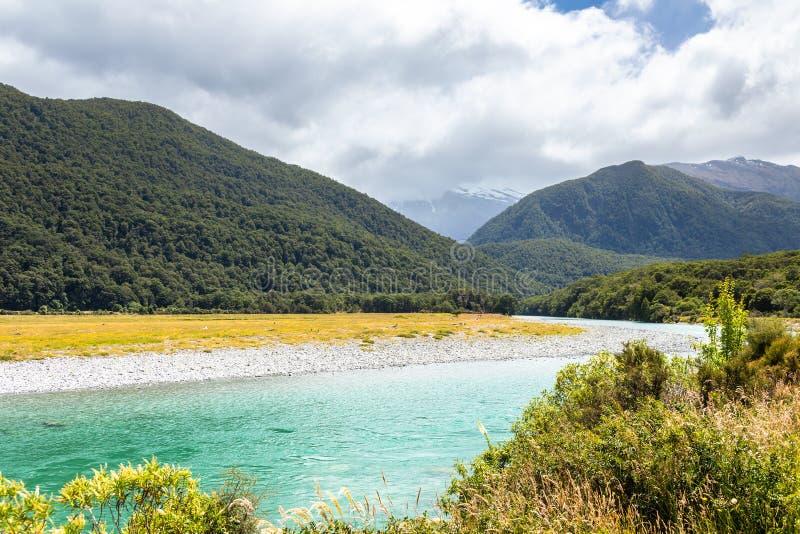 Haast Landsborough Rzeczna dolina Nowa Zelandia zdjęcia royalty free