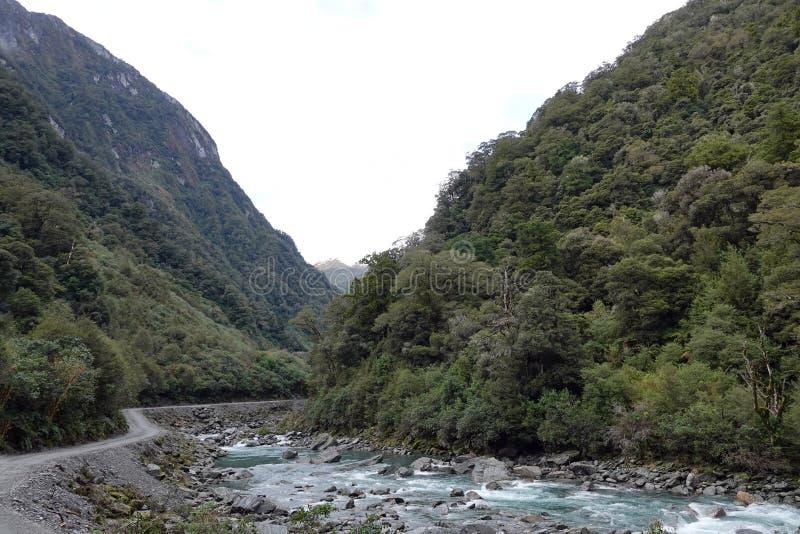 Haast rzeka na Południowej wyspie Nowa Zelandia zdjęcie stock