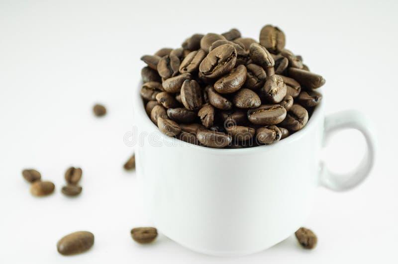 Haba de Offee - pequeña taza llena de grano de café aislado en blanco imágenes de archivo libres de regalías