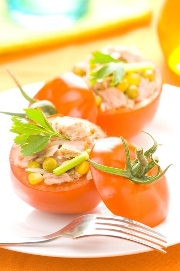 Haba de soja del maíz del apio del tomate relleno del atún imagenes de archivo