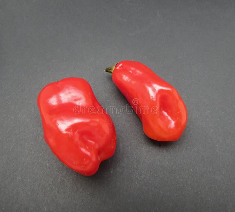 Habanero hot chili pepper vegetables food stock photo