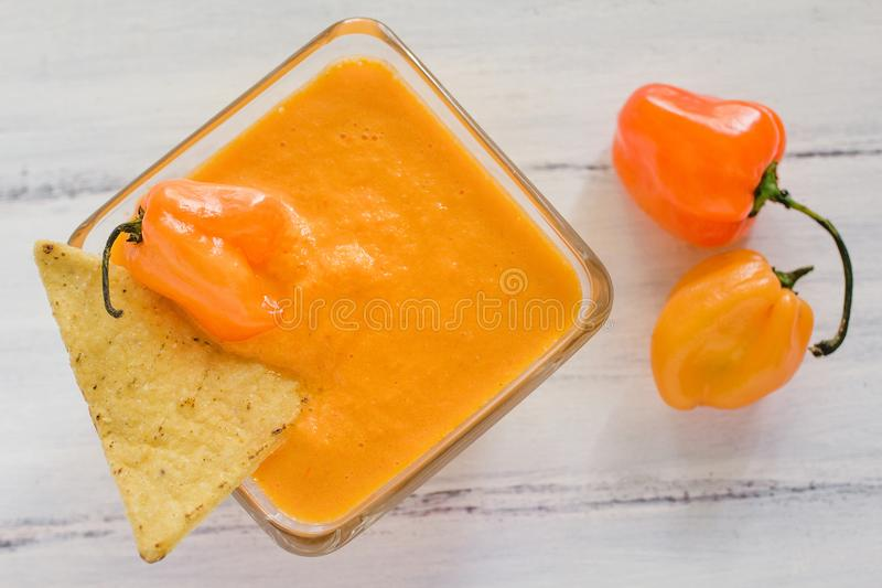Habanero sauce, salsa de chiles habaneros, spicy ripe habanero hot chili peppers mexican food in mexico. Picante royalty free stock photo