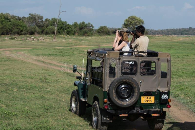 HABARANA, SRI LANKA - AUGUST 25,.2015: Elephant Safari in Sri Lanka royalty free stock photography