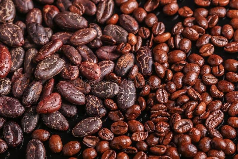 Habas asadas Granos de cacao y granos de café fotos de archivo
