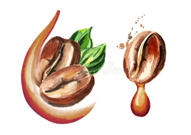 Habas del offee del ¡de Ð y descenso del café natural Ejemplo dibujado mano de la acuarela, aislado en el fondo blanco ilustración del vector