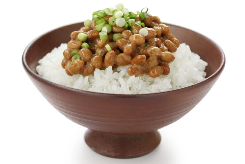 Habas fermentadas de la soja en el arroz, alimento japonés foto de archivo libre de regalías