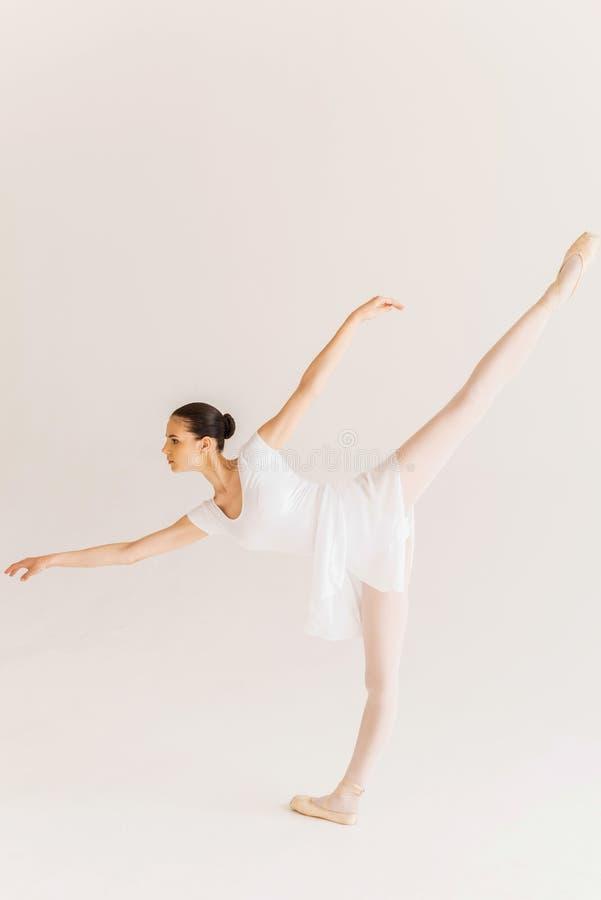 Download Habilidad y tolerancia foto de archivo. Imagen de ballet - 41909364