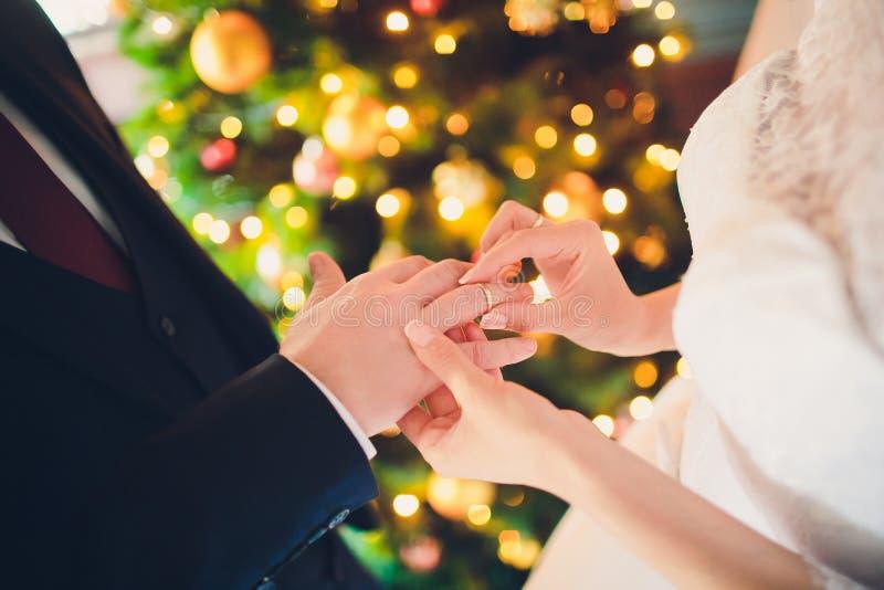 Habillage d'une bague de fiançailles, anneaux de mariage, jour du mariage sur le fond de l'arbre, nouvelle année, Noël photos stock