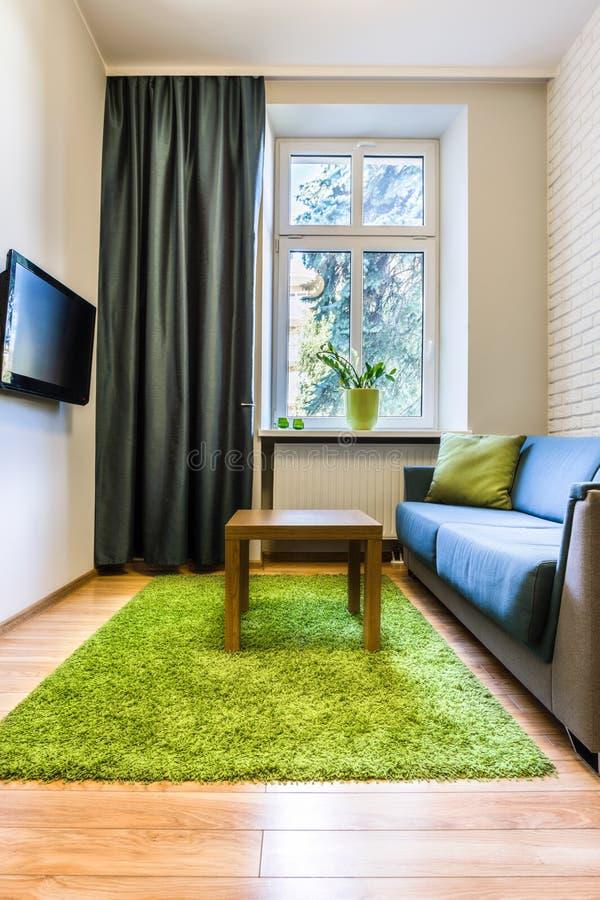 Habitación con la manta verde foto de archivo