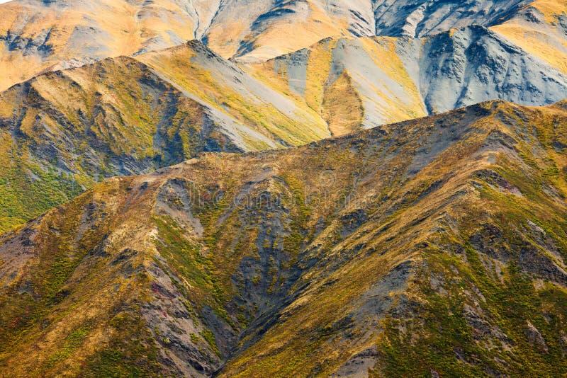 Habitat alpin de toundra dans la gamme de haute montagne image stock