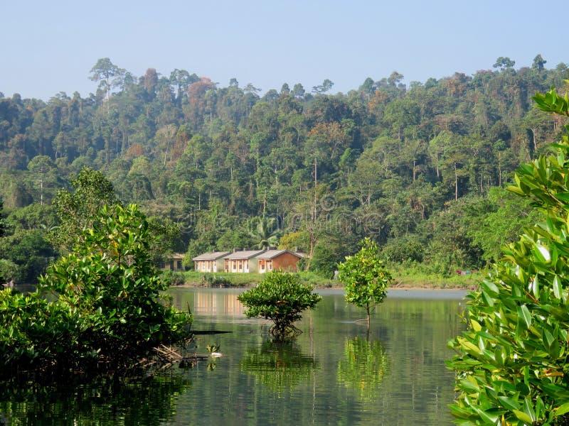 Habitat in Bartang stock foto
