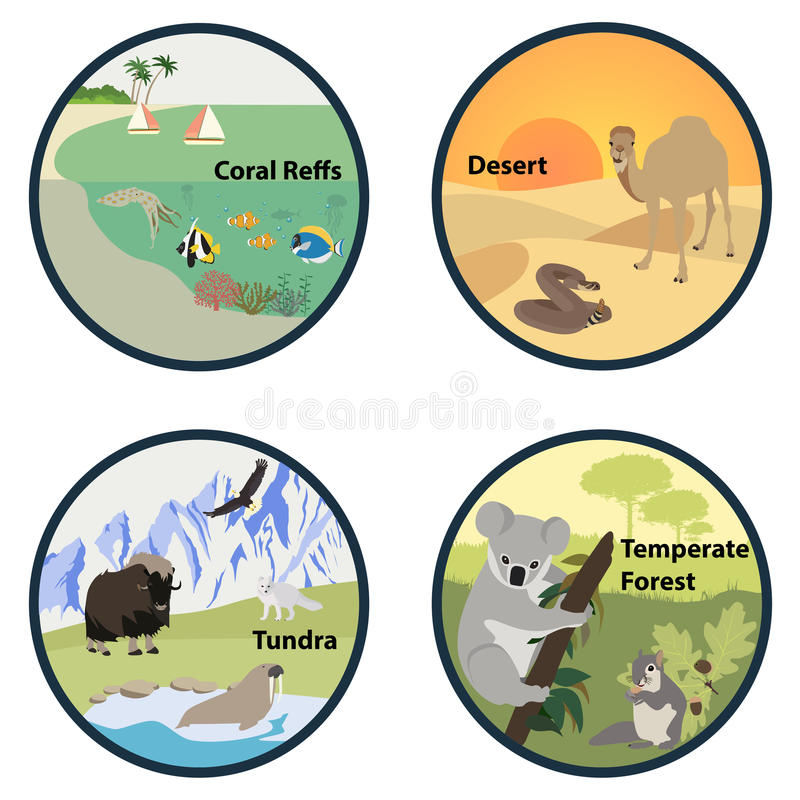 Habitats of the World vector set. Illustration vector illustration