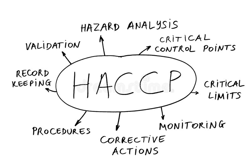 HACCP abstract. Abstract of the management concept HACCP (hazard analysis of critical control points royalty free stock image