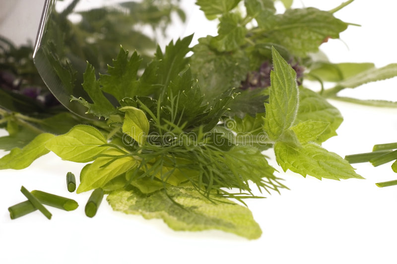 Hachage des herbes fraîches. photo stock