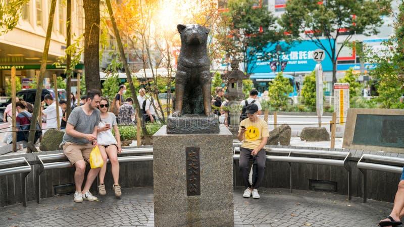 Hachiko纪念雕象 秋田狗故事成为了传奇,并且一个小雕象在前面被架设了 库存照片