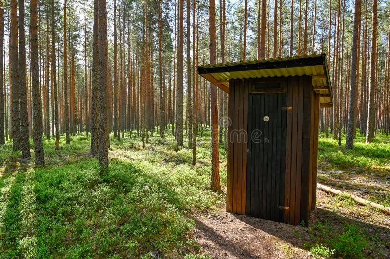 Hacia fuera casa en un bosque de los troncos del pino imagen de archivo libre de regalías