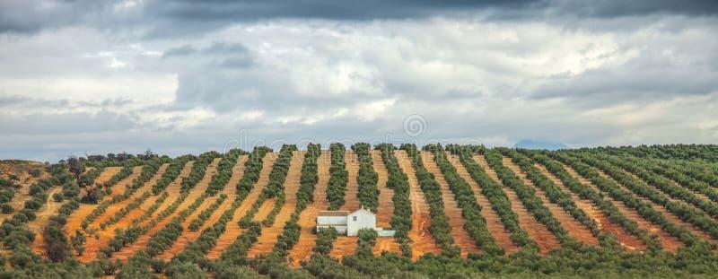 Hacienda, Ανδαλουσία, Ισπανία στοκ φωτογραφίες με δικαίωμα ελεύθερης χρήσης