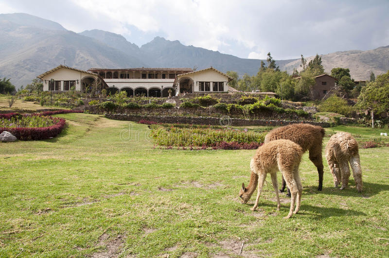 hacienda περουβιανός στοκ φωτογραφίες με δικαίωμα ελεύθερης χρήσης