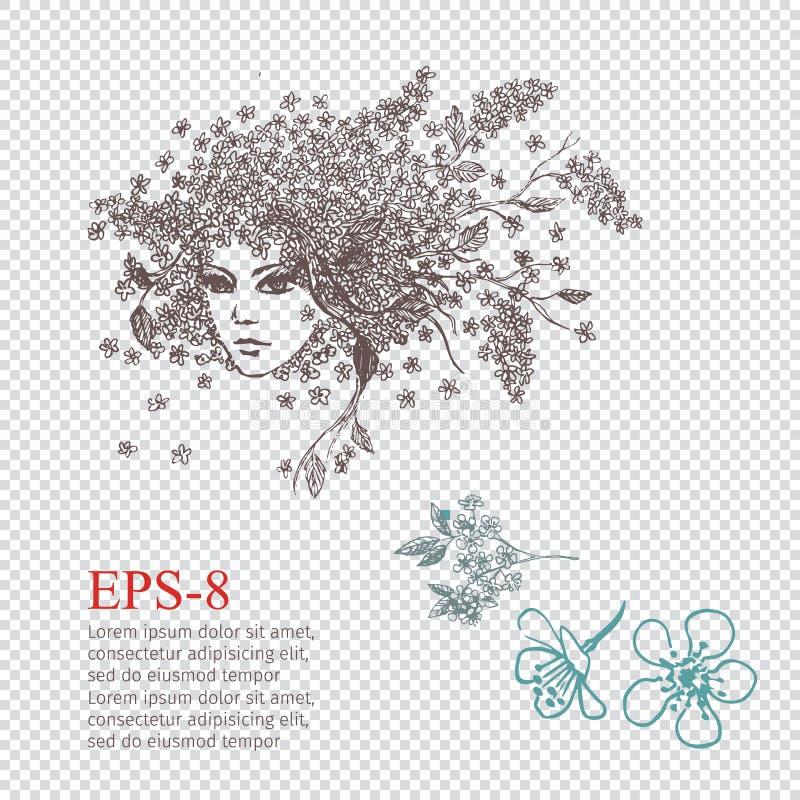 Hackberry Meisje Vrouwelijk portret met bloemenkapsel voor uw ontwerp, vectorillustratie royalty-vrije illustratie