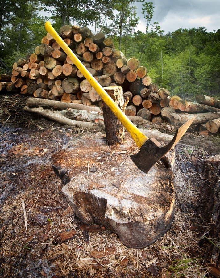 Hacken des Holzes lizenzfreie stockbilder