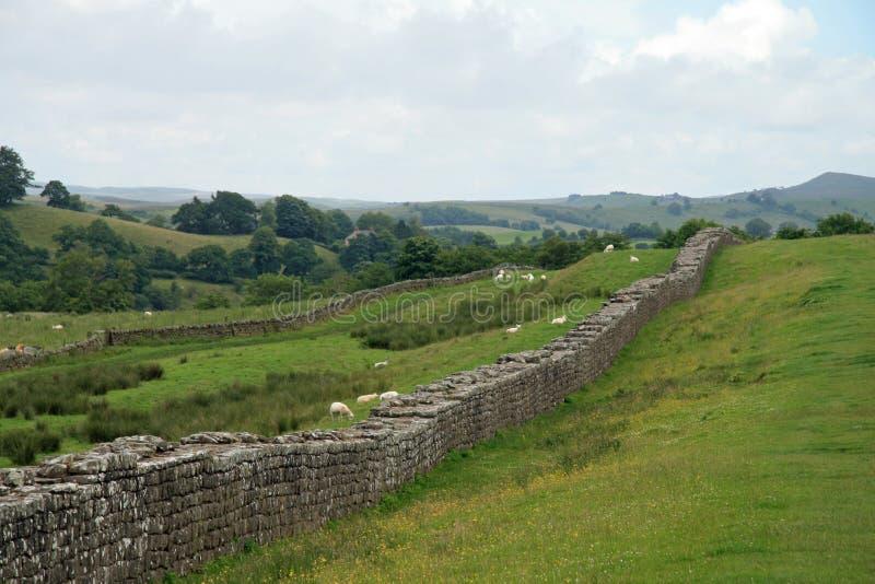 Hadrians-Wand bei Birdoswald lizenzfreie stockbilder