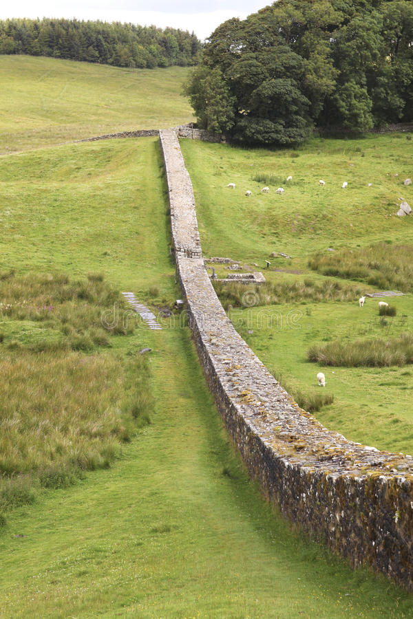 Hadrians Wand in Northumberland stockbilder