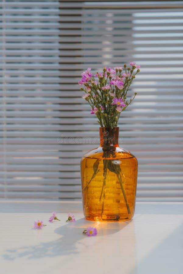 Haethbell i en vas på fönsterbrädan fotografering för bildbyråer