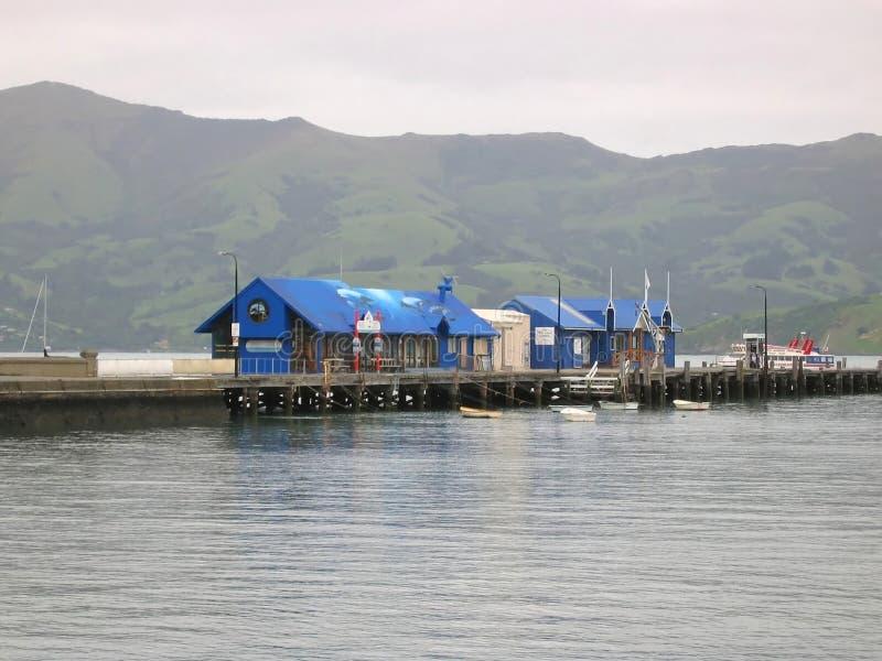 Hafen in Akaroa, Neuseeland stockfotos
