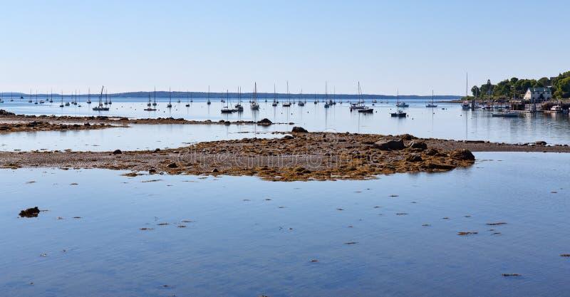 Hafen Belfasts Maine bei Ebbe an einem Sommertag stockbild