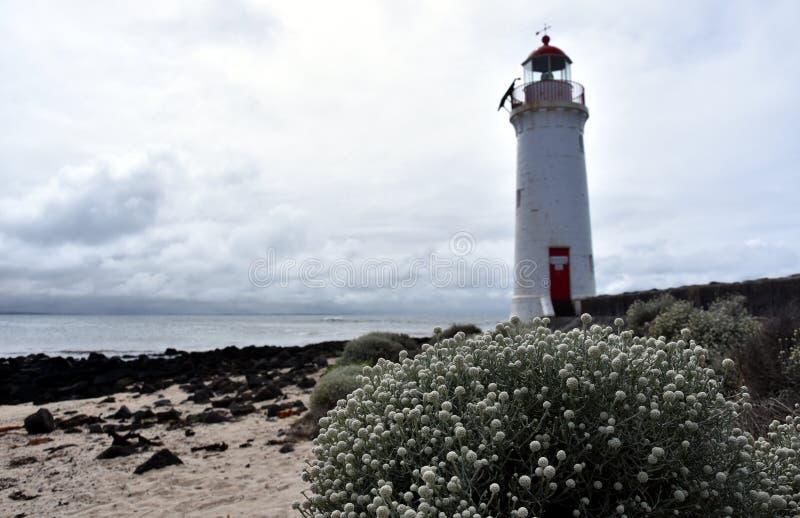 Hafen-feenhafter Leuchtturm, Griffiths-Insel lizenzfreie stockfotos