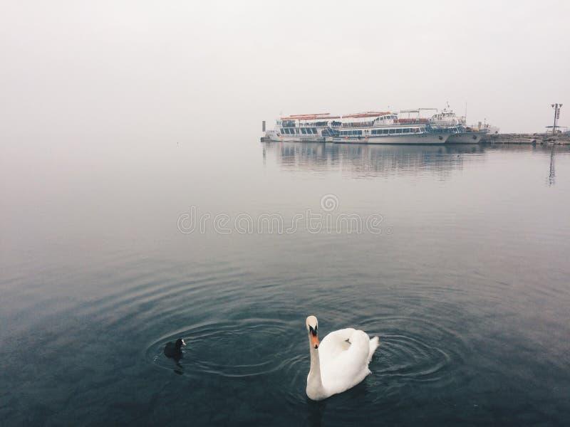 Hafen von Ohrid stockfoto