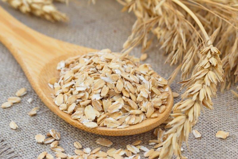 Hafer mit den Ohren des Getreides lizenzfreies stockbild