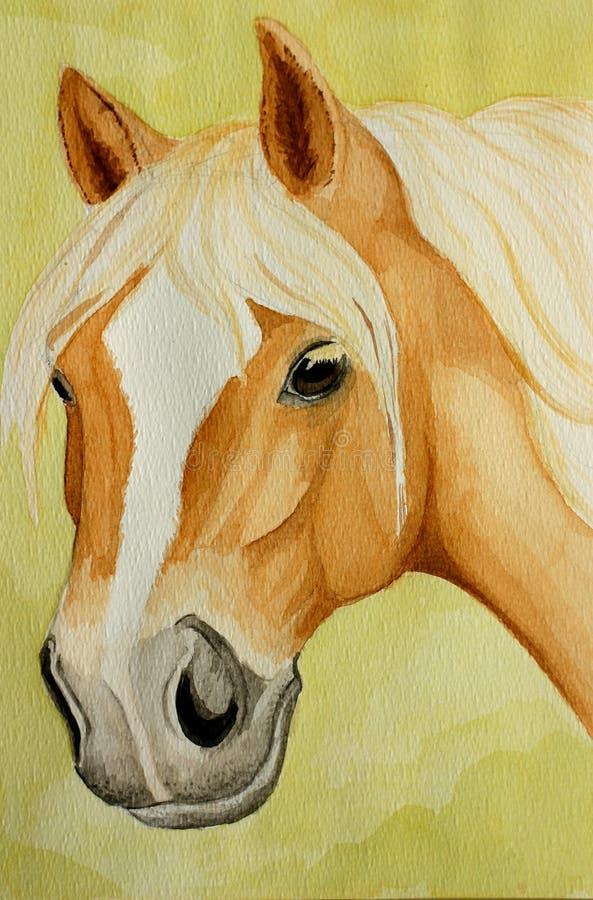 Haflinger horse painting royalty free stock photo