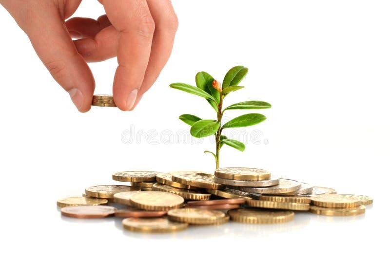 Haga el concepto del dinero. imagen de archivo