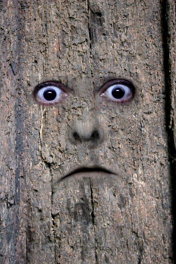 Haga frente en la madera 2 imagenes de archivo
