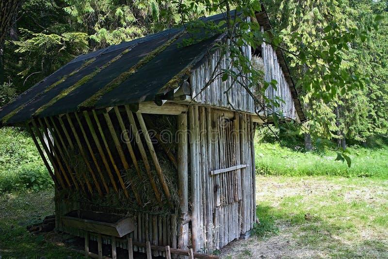Haga heno el almacenamiento - alimentador para alimentar animales salvajes del bosque en el valle de Ilanovska fotografía de archivo libre de regalías