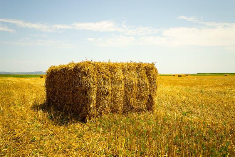 Haga heno la pila en el campo de la agricultura - ajardine la visión foto de archivo