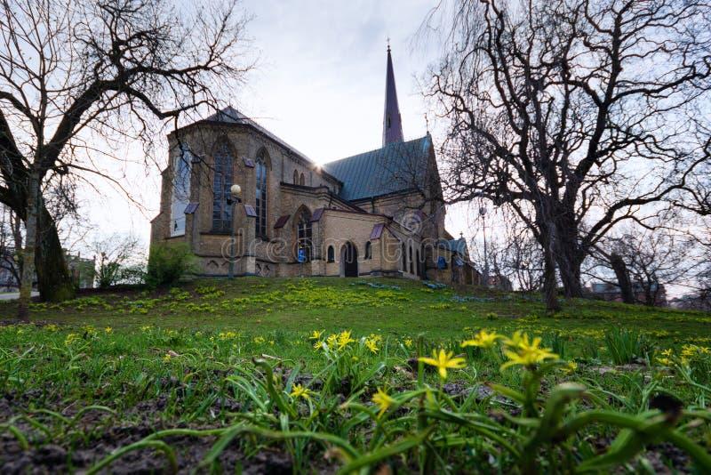 Hagakyrkan die met gele bloemen tijdens de vroege lente Gothenburg wordt omringd royalty-vrije stock foto's