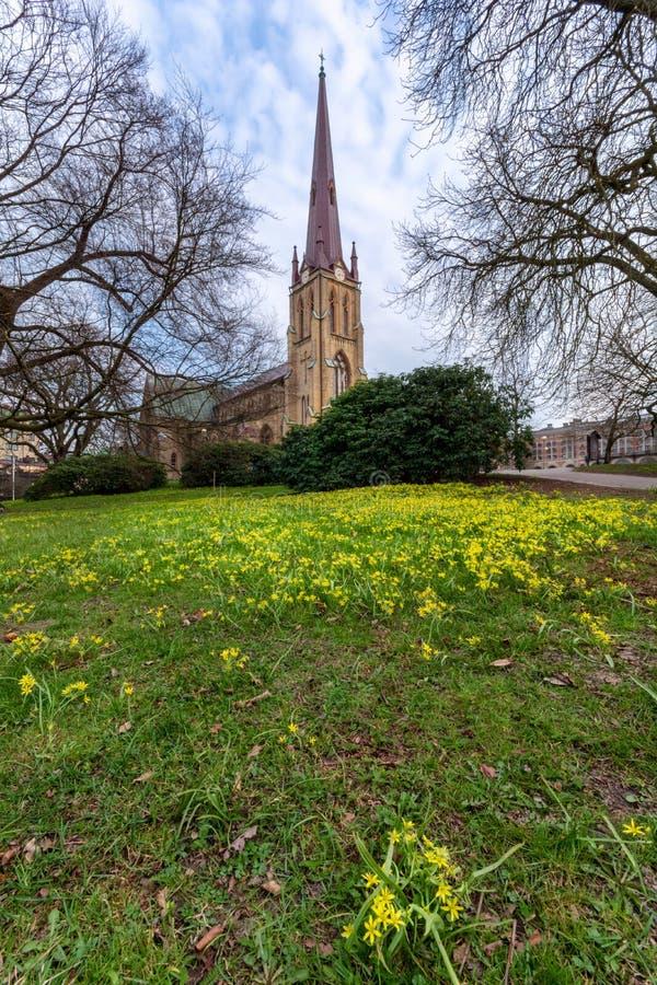 Hagakyrkan ha circondato con i fiori gialli durante la molla in anticipo Gothenburg fotografia stock