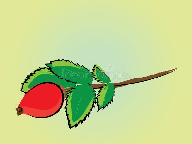 Hagebuttebeere und Blattaquarell wie Illustration stock abbildung