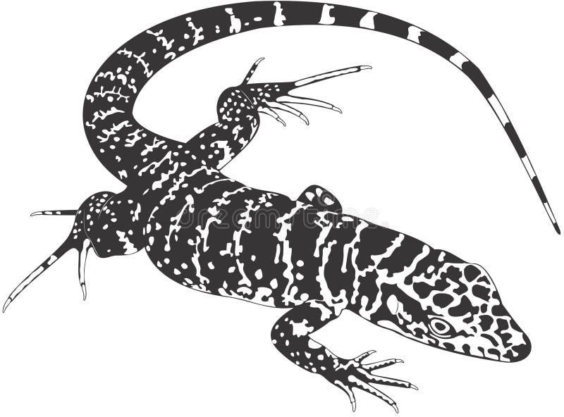 Hagedis vector illustratie
