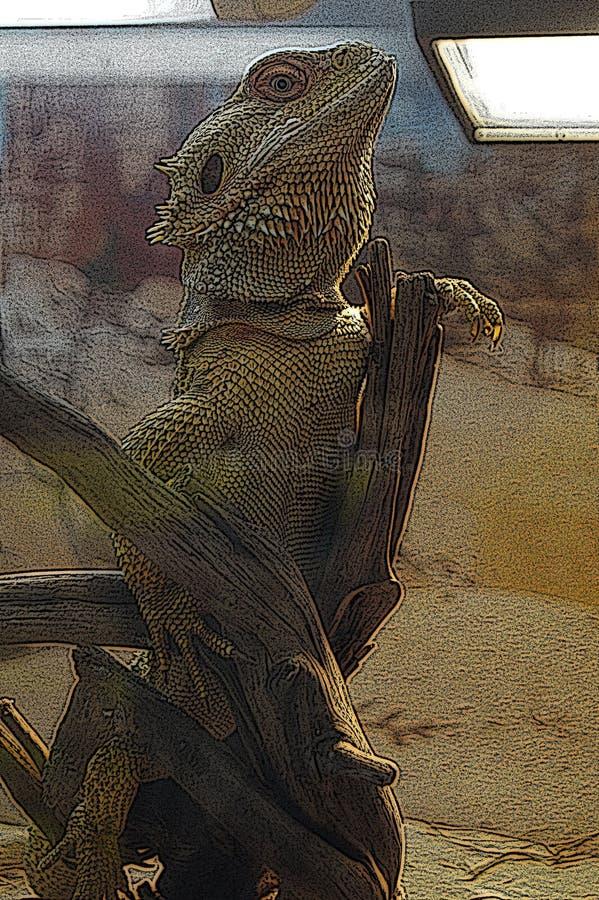 Hagedis van de illustratie de Australische draak stock afbeelding