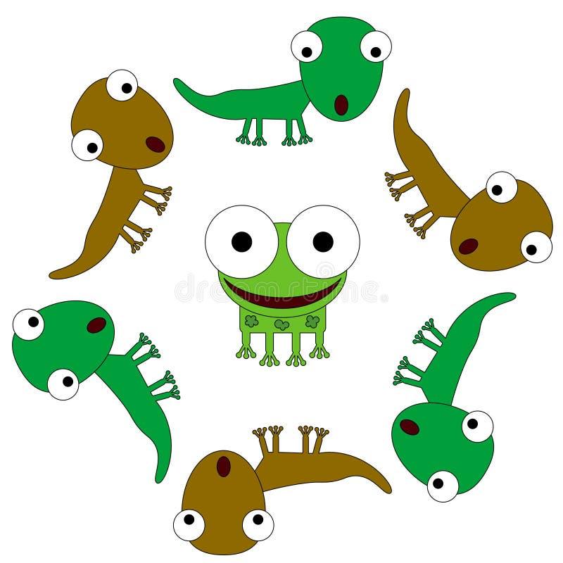 Hagedissen en een kikker vector illustratie