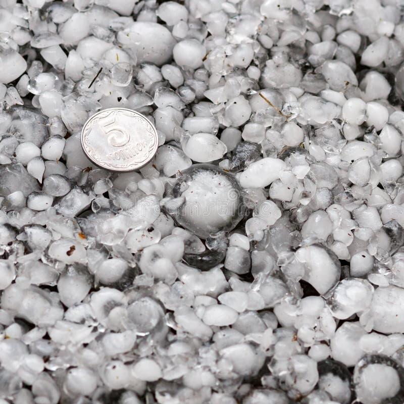 Hagelkorn aus den Grund nach Hagelwetter, Hagel der großen Größe, Hagel sortiert mit einer größeren Münze lizenzfreie stockfotos