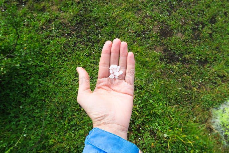 Hagelkorn i hand Rymma ett handfullhagel på gräsbakgrunden royaltyfri bild